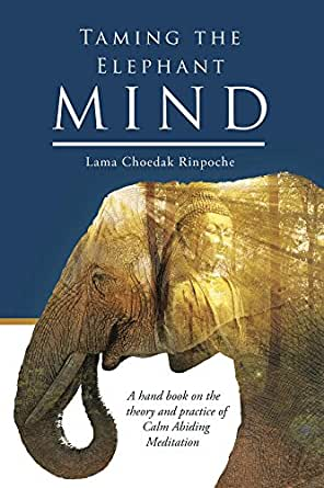Taming the Elephant Mind